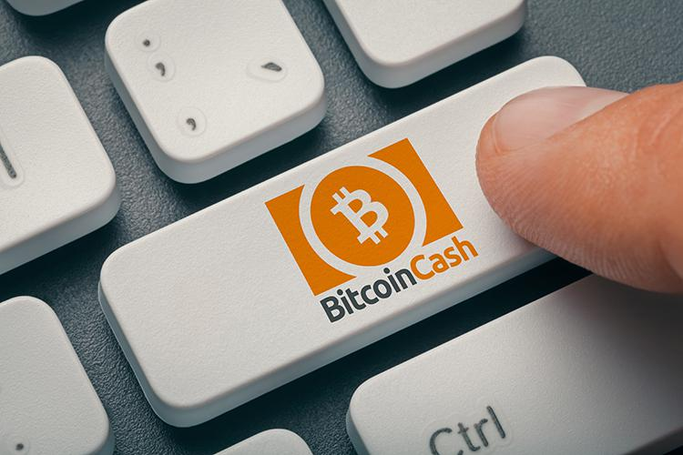 Bitcoin cash (bch) Cryptocurrency