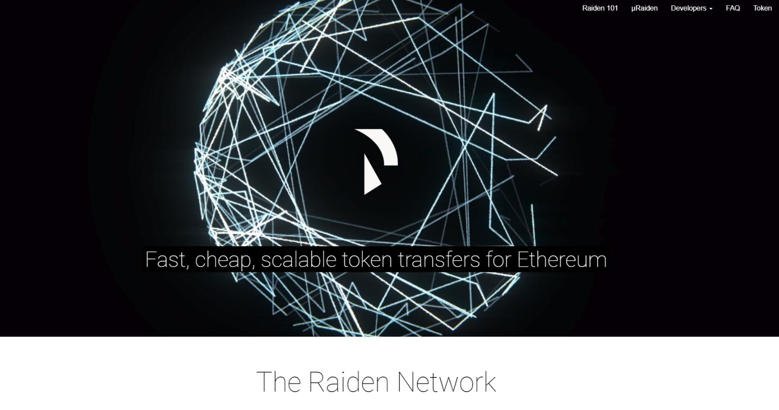 Image result for raiden network image